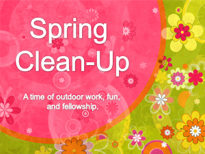spring_clean_up_rect_2